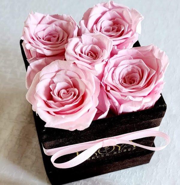 FOREVER ROSES, SQUARE BOX 4