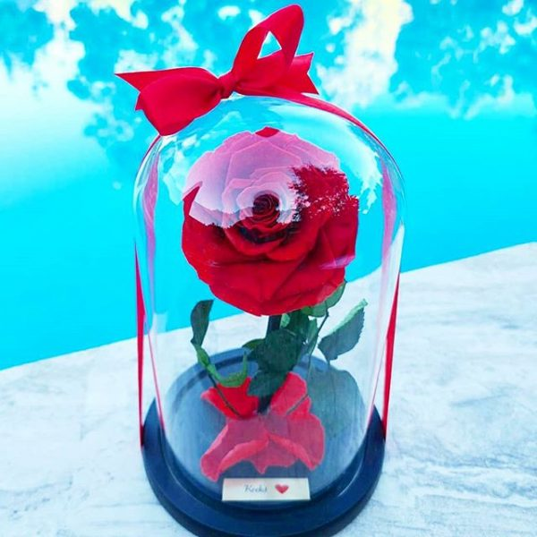 custom plate rose dome - red dome rose