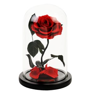 Beauty and the Beast Rose in Glass - Red