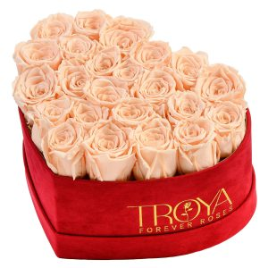 Heart box Peach forever Roses