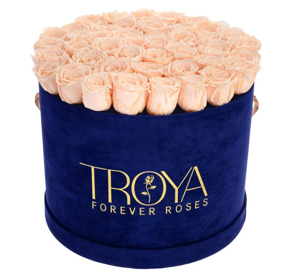 Champagne Forever Roses