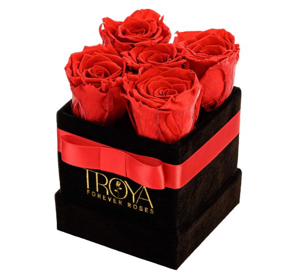 Small Box Forever Roses