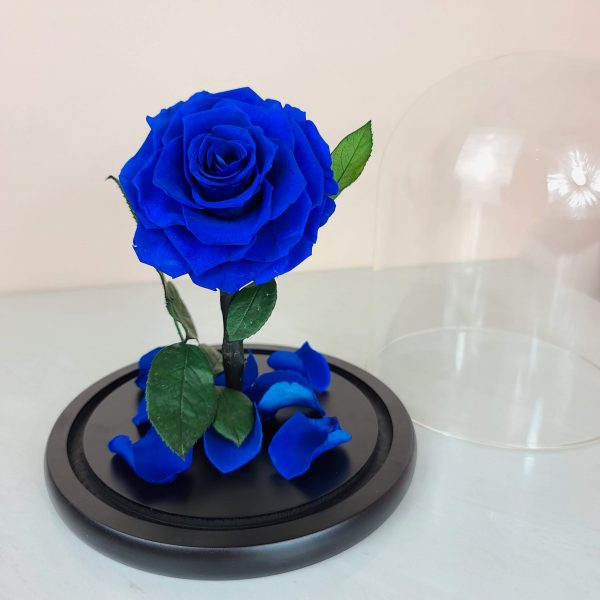 royal blue rose dome