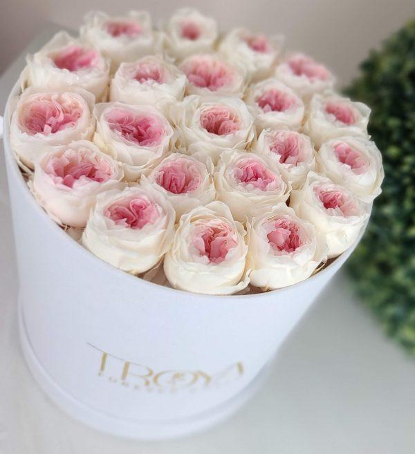 White round box with white & pink eternity peonies