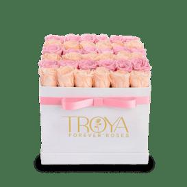 Square box forever roses