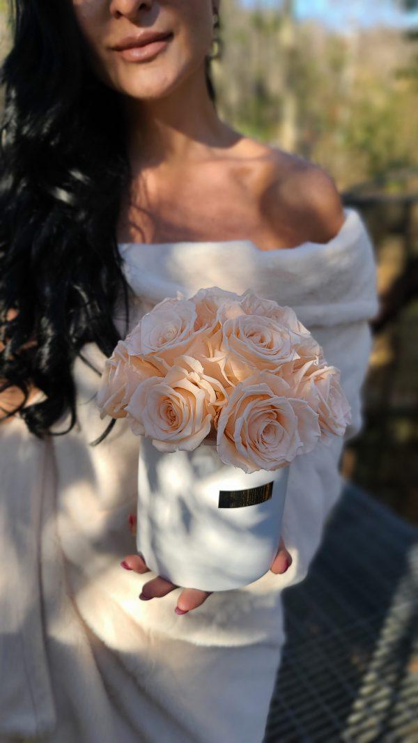 peach Forever Roses - El Luna
