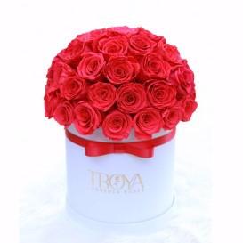 El Luna Forever Roses Bouquet